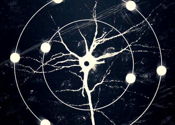 Мозг и кислород: в бесконечной пляске смерти